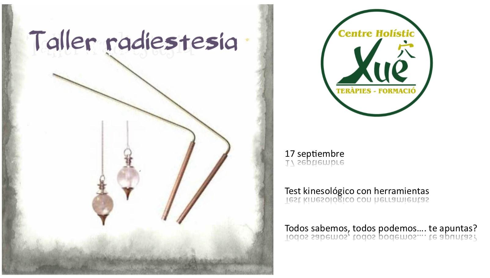 taller radiestesia, kinesología con herramienta